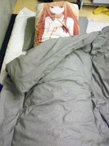 第二代抱き枕使用例。利用期間は2009年8月~